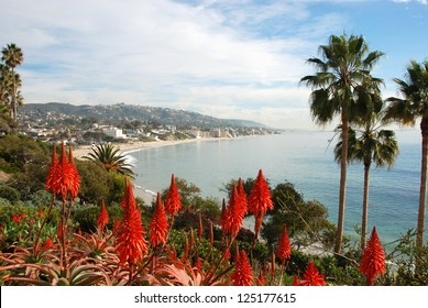 California coastline with beautiful beaches, cliffs and coves