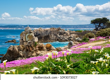 California coastline in spring with blue sky