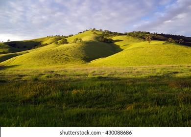 California, Concord, landscape