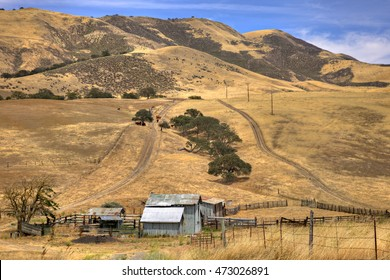 California country side with farm house and cows.