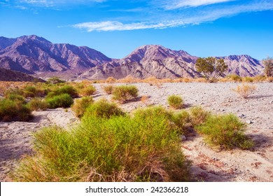 California Desert Lands. Coachella Valley in Southern California near La Quinta. Desert Landscape.