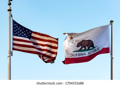 California Flag with symbols star and bear