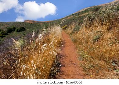 California hiking trail near San Francisco
