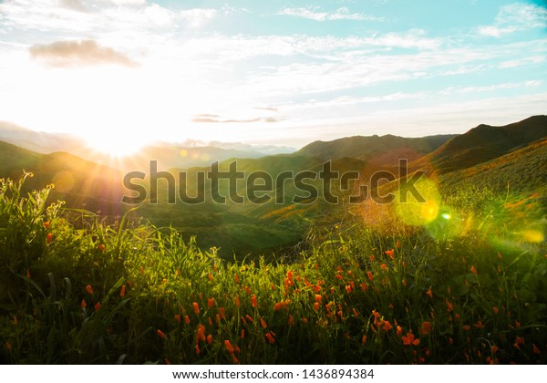 California Hills Background Colors Lake Elsinore Hills Green, Colorful, and Full of Life