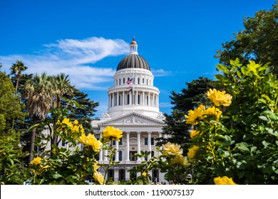 California State Capitol building, Sacramento, California; sunny day; beautiful yellow roses in the foreground