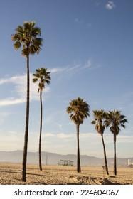 California Summer - Santa Monica Beach