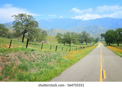 California, United States - winding road in countryside landscape of Tulare County. Yokohl Drive.