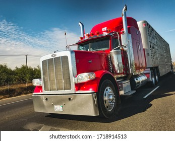California, Year 2017: Front giant american truck driving en route to the USA. Peterbelt Heavy Vehicle with Trailer. Cargo Logistic.