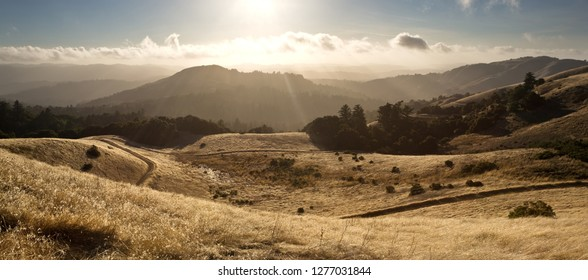 In California's Santa Cruz Mountains, moisture flows in from the Pacific Ocean in Late Summer