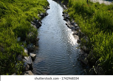 a calm brook and grassland on both sides.