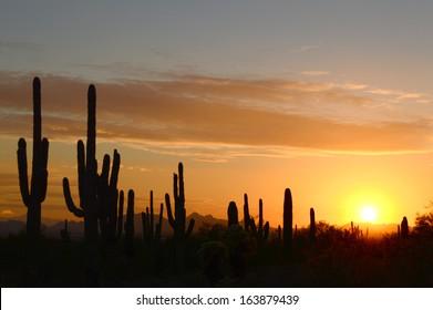 Calm desert sunset with sun on horizon