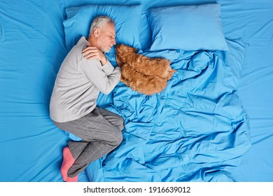 Calm grey haired man sleeps well in bed together with small puppies lying on soft pillow has good healthy sleep dressed in pajama takes nap after hard working day. Bedtime concept. View from above