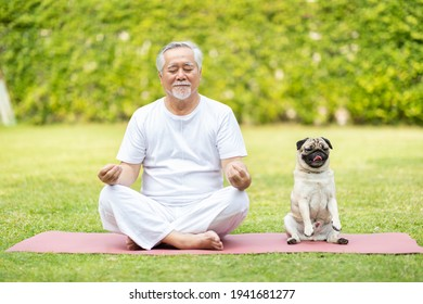 Calm of Healthy Asian Elderly man with white hairs exercise yoga lotus pose on yoga mat for meditation with dog pug breed on green grass at park,Wellness Senior Recreation with yoga and dog concept