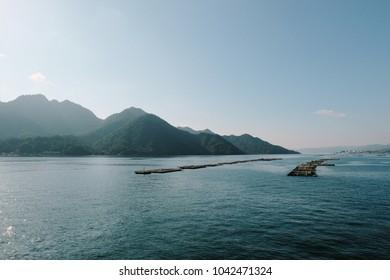 Calm Japanese nature