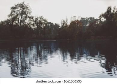 Calm lake with beautiful trees