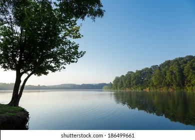 Calm lake reflecting trees on a clear summer morning