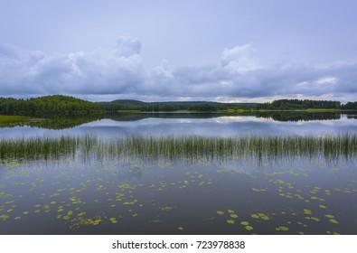 Calm lake scenery after rain