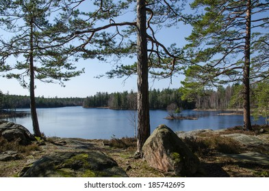 Calm lake in the woodlands at the province Smaland in Sweden