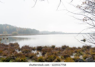 Calm misty pond by fall season at the swedish island Oland