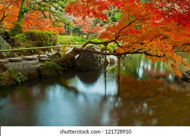 Calm , natural and quiet Japanese style park and garden with long exposure , koishikawa korakuen , tokyo , japan