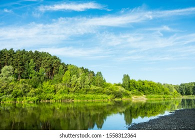 Calm river with forest on the shore