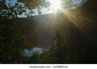 Calm river in the morning sun with trees, forest and clear sunbeams