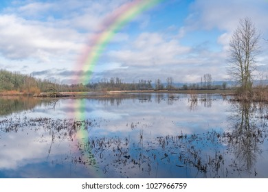 Calm, Tranquil Lake and Marsh with Rainbow, Sky,  Clouds and Trees Reflection in Still Water