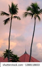 Calm warm colored  sunset behind palms in Kailua Bay, Big Island