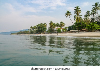 Calm water, palm trees and white sand beach at Tokeh Beach, south of Freetown, Sierra Leone, Africa