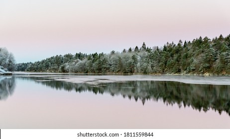Calm water and reflections from trees and sky. Beautiful silence morning at sunrise, dawn in early winter. Pink colored sky as background, place for text, copy space.