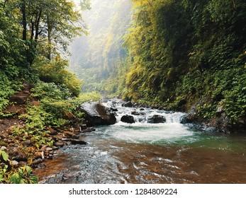 Calming river in Bali