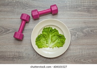 Calorie Restriction or Exercise
