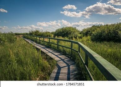 Calowanie Swamp - wooden footbridge on the peatbog in the Masovian Landscape Park, Karczew, Poland