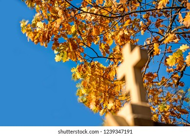 calvary with station of the cross and autumnal tree