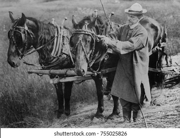 Calvin Coolidge adjusting a horse's harness on his father's farm in Plymouth, Vermont. Ca. 1920-23. Future President Calvin Coolidge wore a smock and leather boots while mowing hay.