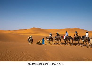 Camal Caravan in Sahara Desert in east Morocco
