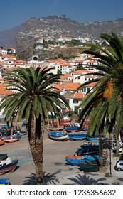 Camara de Lobos. Madeira. 09.09.06. The port of Camara de Lobos on the Portuguese Island of Madeira.