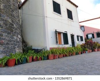 Camara de Lobos, Portugal / Portugal - January 2019: Flowers by the building in Camara de Lobos