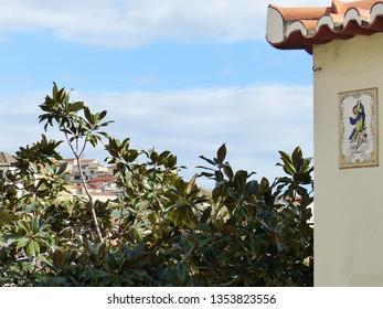 Camara de Lobos, Portugal / Portugal - January 2019: Building and tree in Camara de Lobos