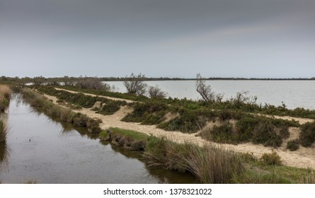 Camargue, France - April 20, 2019: On the shore of the great Etang (lagoon) de Vaccarès.
