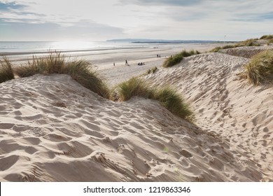 Camber Sands, sandy beach at the village of Camber, East Sussex near Rye, England, the only sand dune system in East Sussex. View of the dunes, grass, sea, selective focus