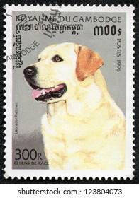 CAMBODIA - CIRCA 1996: stamp printed by Cambodia, shows a labrador retriver dog,circa 1996