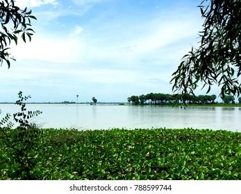 cambodia countryside nature