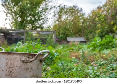 Cambridge, Cambridgeshire, UK - Circa October 2018: Shallow focus of a rural collection of timber chicken houses used for livestock, seen in an overgrown location. A nearby metal pot is a drinker pot.