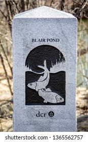 Cambridge, MA / USA - March 24, 2019: Granit sign post marker at Blair Pond conservation land in the Alewife area