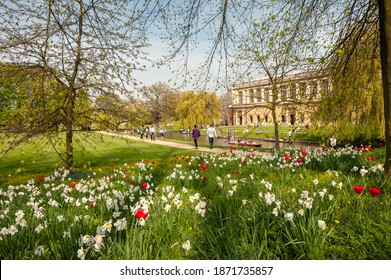 CAMBRIDGE, UK - APRIL 24, 2010:  View of the Backs on a spring day with the River Cam in front of Trinity College