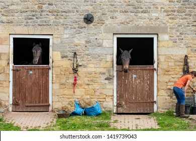 Cambridge, UK - Circa June 2019: Young groom seen tending to a pair of horses seen in there individual stables. Located at a Grade 2 listed manor estate, the stable block has around 30 horses in total