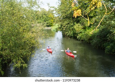 Cambridge, UK -  September 2018. Two men kayaking on red single kayaks on a muddy small river (river Cam) surrounded by lush vegetation.