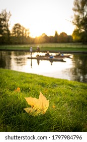 Cambridge / United Kingdom - November 14, 2013: An autumn leave on the riverbank of River Cam, with two punts on the river.