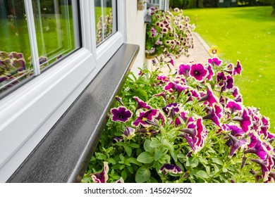 Cambridgeshire, UK - Circa July 2019: Detailed view of newly installed double glazed windows seen on a housing annex. Pretty flowers are seen in a window basket next to a large lawn area.